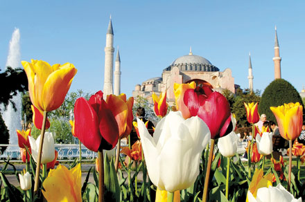 Фестивал на лалето 2019 в Истанбул  2 нощувки с посещение на парка Емирган и църквата Св. Стефан
